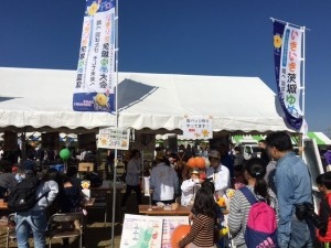 稲敷市文化祭